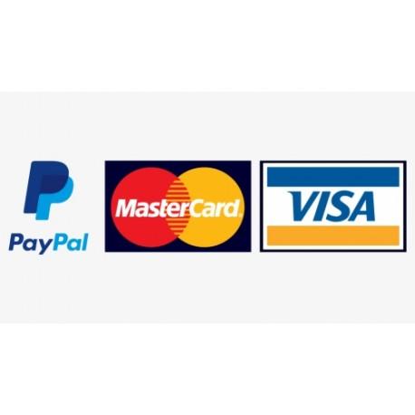 Avansinis mokėjimas už prekes / paslaugas